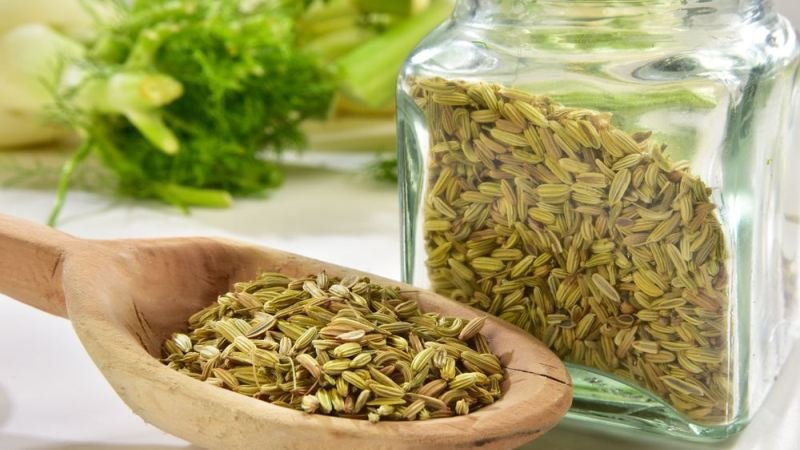 Fennel Seeds: Weight Loss and Other Benefits